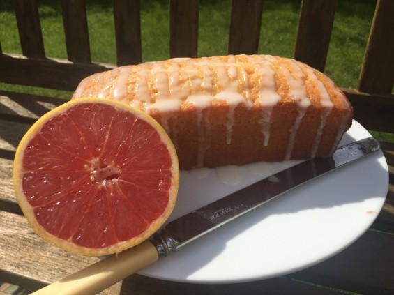 Grapefruit drizzle 1